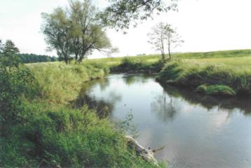 rzeka_kamienna